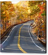 Rural Road Running Along The Maple Trees In Autumn 2 Acrylic Print