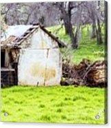 Rural Ruin Acrylic Print