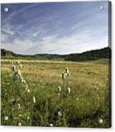 Rural Scenic Landscape Acrylic Print