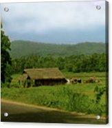 Rural Village Acrylic Print