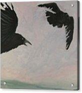 Rush Hour Ravens Acrylic Print by Amy Reisland-Speer