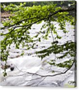 Rushing River Acrylic Print by Thomas R Fletcher