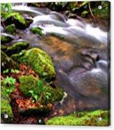 Rushing Stream Monongahela National Forest Acrylic Print