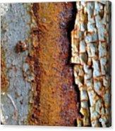 Rust And Ladybug Acrylic Print