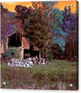 Rustic Barn In Disrepair False Color Infrared Acrylic Print