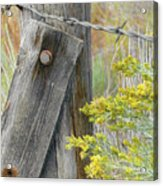 Rustic Fence And Wild Flowers Montana Acrylic Print