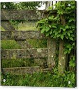 Rustic Gate Acrylic Print
