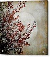 Rustic Moon Acrylic Print