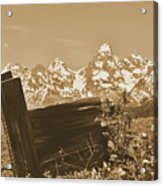 Rustic View Of Grand Teton Acrylic Print