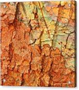 Rusty Bark Abstract Acrylic Print