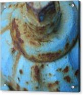 Rusty Blue Fire Hydrant Acrylic Print