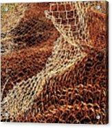 Rusty Chain Link Acrylic Print