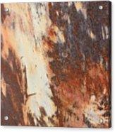 Rusty Drum #1 Acrylic Print