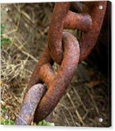Rusty Links Acrylic Print