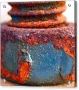 Rusty Screw And Bolt Acrylic Print