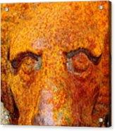 Rusty The Lion Acrylic Print