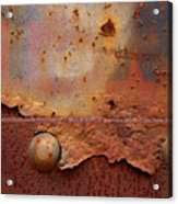 Rusty Train  Acrylic Print