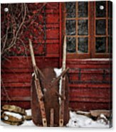 Rusty Wheelbarrow Leaning Against Barn In Winter Acrylic Print by Sandra Cunningham