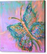 Ryans Butterfly Acrylic Print