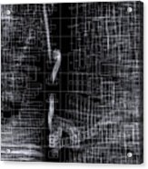 S.2.35 Acrylic Print