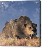 Saber-toothed Hunter Acrylic Print