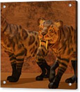 Saber-toothed Tiger Cave Acrylic Print