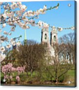 Sacred Heart And Branch Brook Cherry Blossoms  Acrylic Print