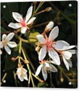 Sacred Heart Flowers Acrylic Print