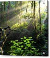 Sacred Light Acrylic Print