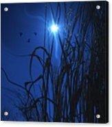 Sacred Moon... Acrylic Print
