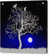 Sacred Raven Tree Acrylic Print