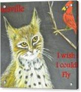 Sad Cat Acrylic Print