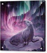Sad Lonely Seal Acrylic Print