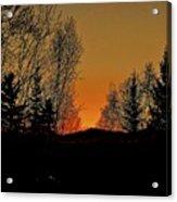 Saffron Sunset Acrylic Print