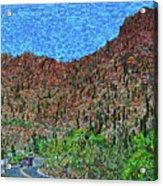 Sagauro National Park Acrylic Print