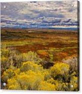 Sagebrush Country Acrylic Print
