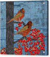 Sagebrush Sparrow Long Acrylic Print