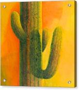 Saguaro In Summer Acrylic Print