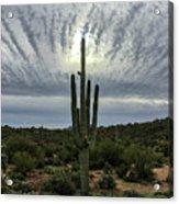 Saguaro Sun Break Clouds Acrylic Print