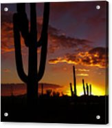 Saguaro Sunset Silhouette #2 Acrylic Print