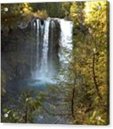 Sahalie Falls Acrylic Print