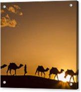 Sahara Desert Sunset Acrylic Print