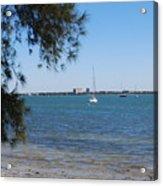 Sail Boat On Sarasota Bay Acrylic Print