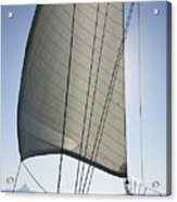 Sail In The Wind. Acrylic Print