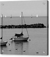 Sailboats And Ducks B-w Acrylic Print