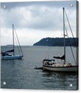Sailboats In Bar Harbor Acrylic Print