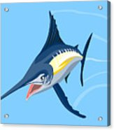 Sailfish Diving Acrylic Print