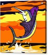 Sailfish Jumping Retro Acrylic Print by Aloysius Patrimonio