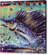 Sailfish Acrylic Print by Robert Wolverton Jr