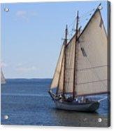 Sailing Downeast Acrylic Print